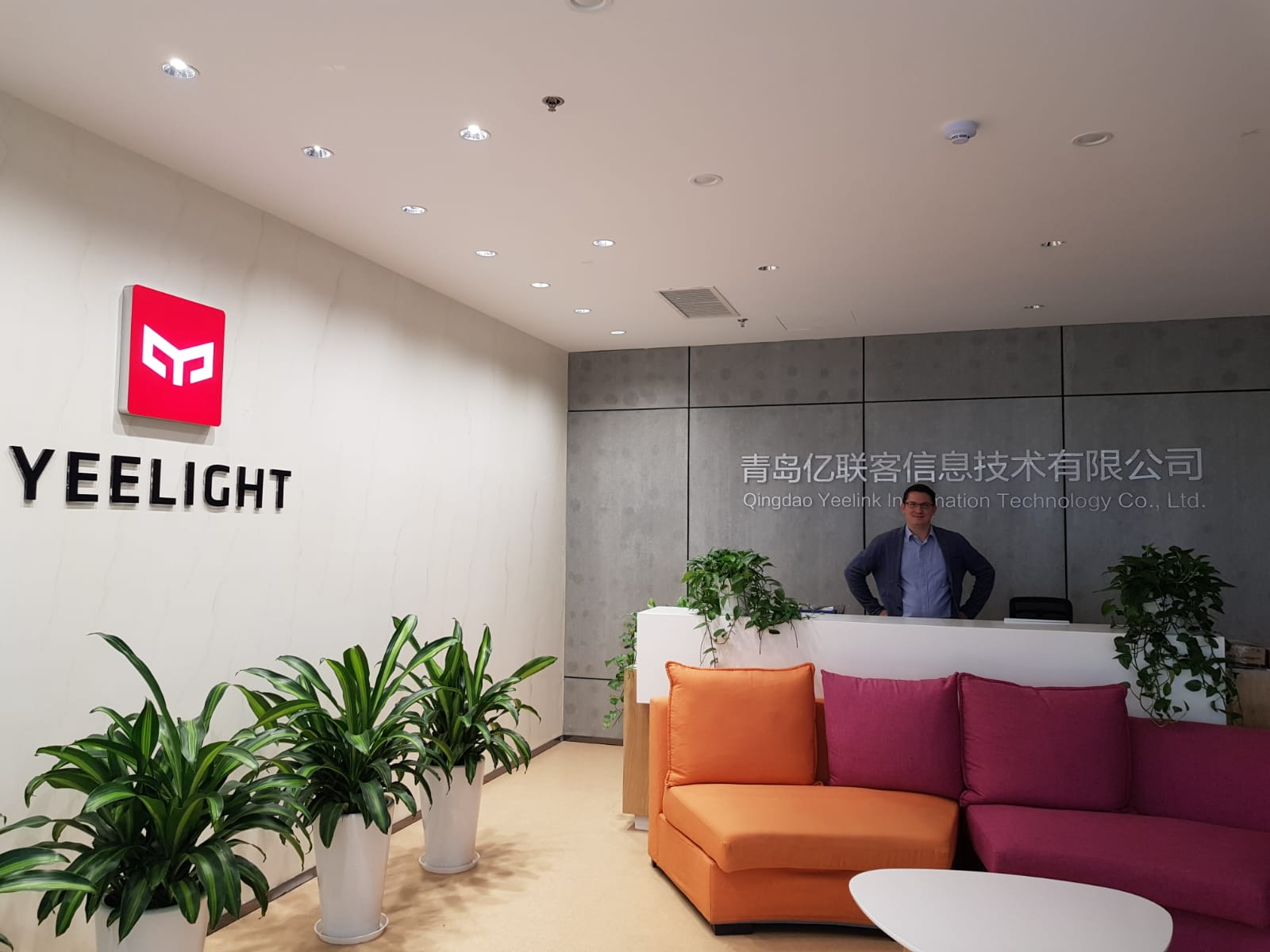 livebau and Yeelight think about cooperating